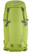 Salewa Ascent 28 Backpack leaf green
